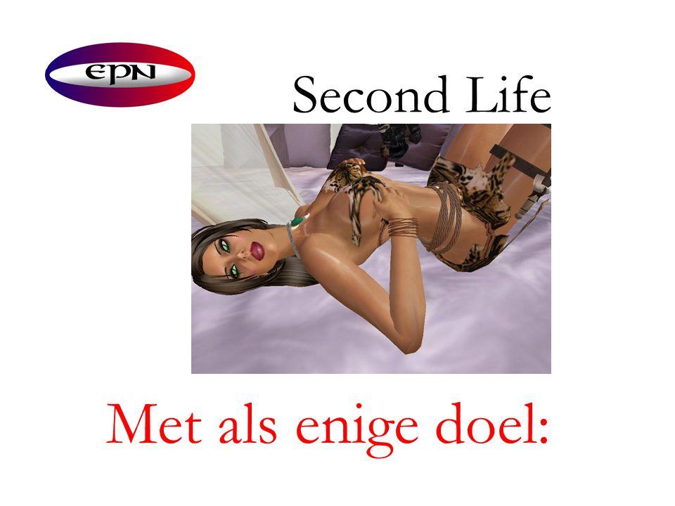 Second Life Met als enige doel:
