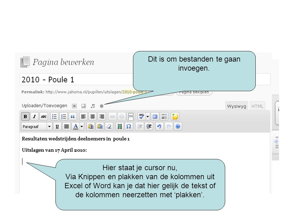 Dit is om bestanden te gaan invoegen. Hier staat je cursor nu, Via Knippen en plakken van de kolommen uit Excel of Word kan je dat hier gelijk de teks