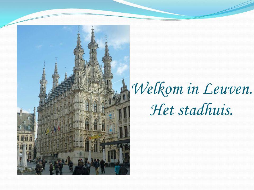 Welkom in Leuven. Het stadhuis.