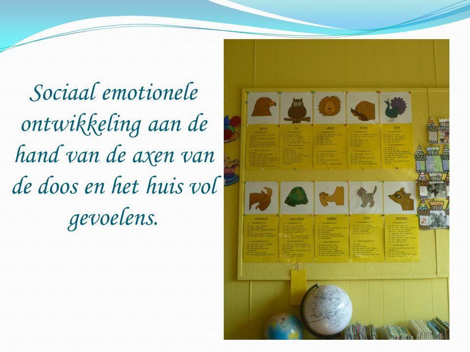 Sociaal emotionele ontwikkeling aan de hand van de axen van de doos en het huis vol gevoelens.