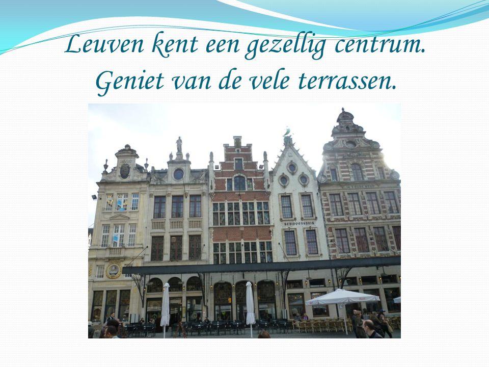 Leuven kent een gezellig centrum. Geniet van de vele terrassen.