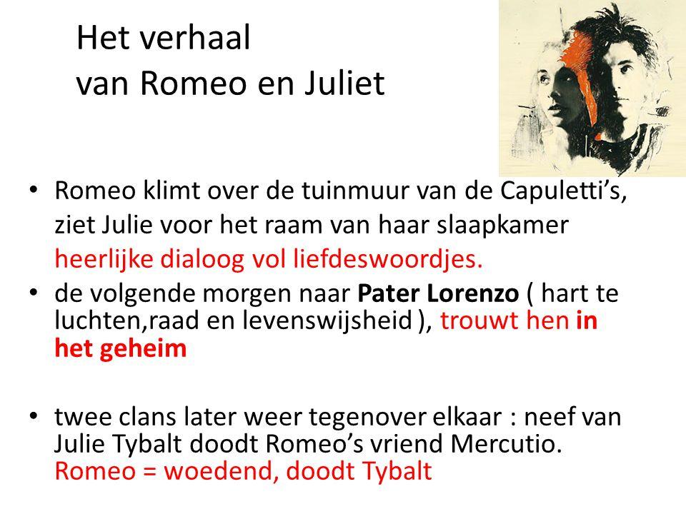 keuzemogelijkheden • Romeo is man, Julie is vrouw...