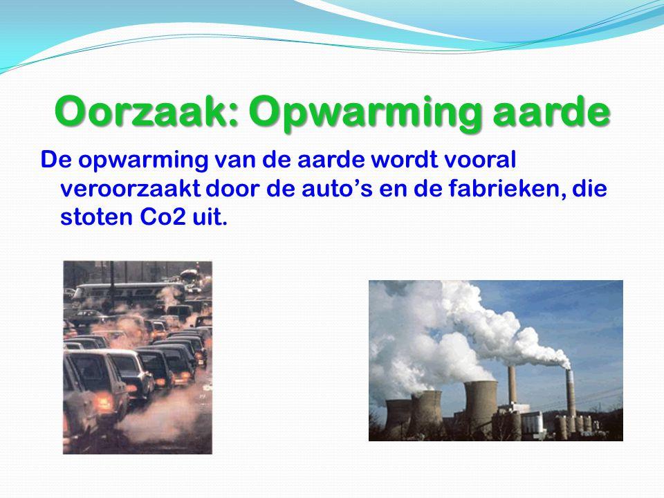 Oorzaak: Opwarming aarde De opwarming van de aarde wordt vooral veroorzaakt door de auto's en de fabrieken, die stoten Co2 uit.