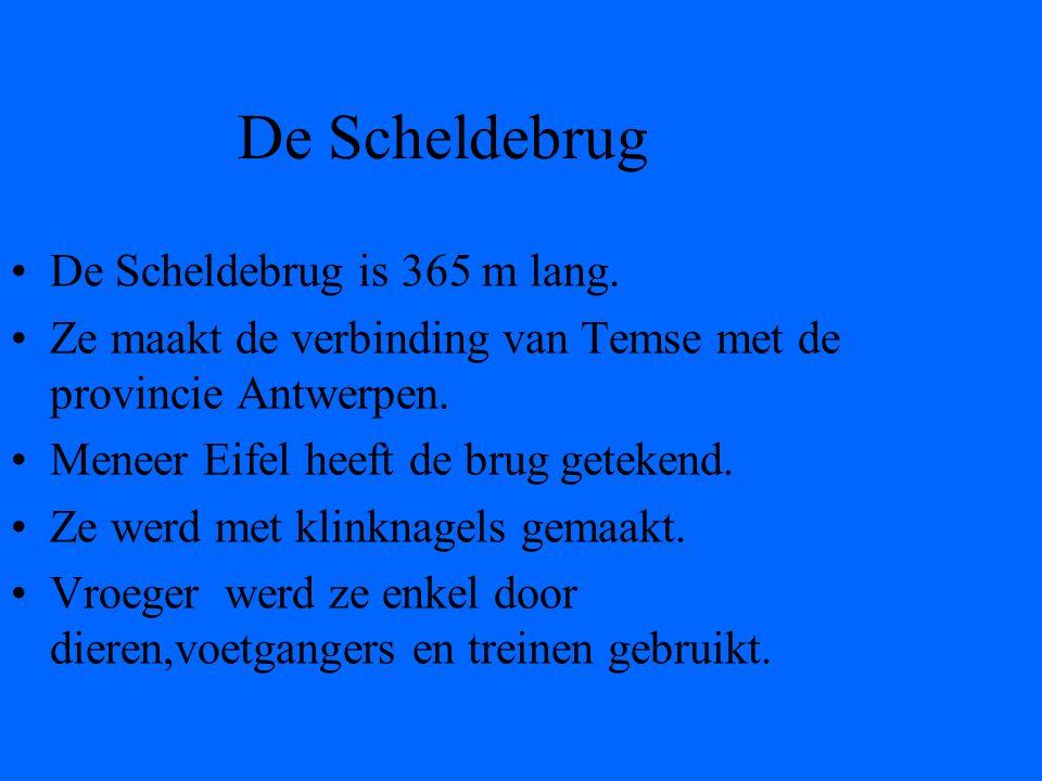 •De Scheldebrug is 365 m lang.•Ze maakt de verbinding van Temse met de provincie Antwerpen.