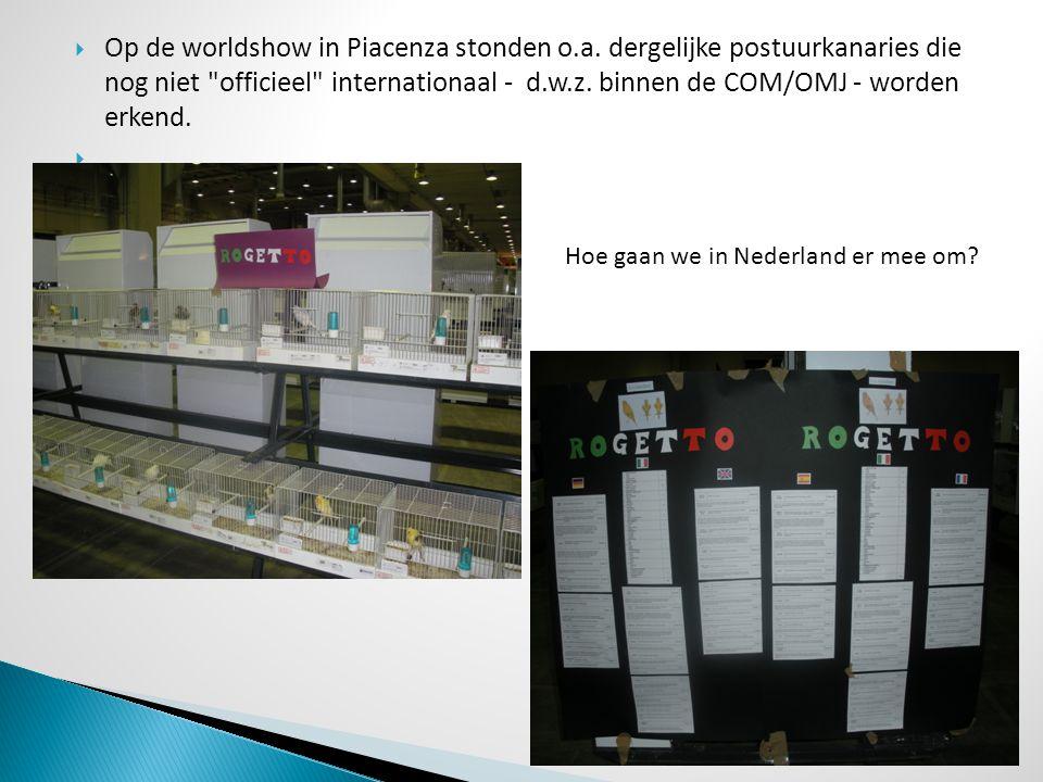  Op de worldshow in Piacenza stonden o.a. dergelijke postuurkanaries die nog niet