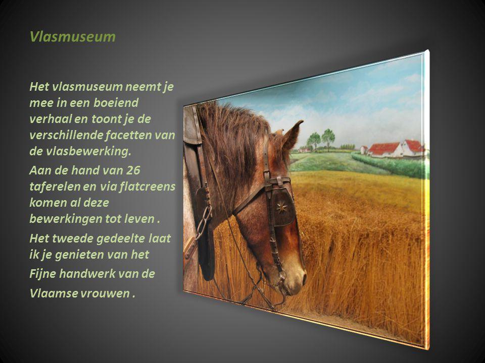 Nationaal Vlasmuseum Kortrijk Vlasmuseum Boeiend ingericht 1963 geopend 1982 18 jaar voorbereiding en met succes.in1971 van geplande sloping gered.