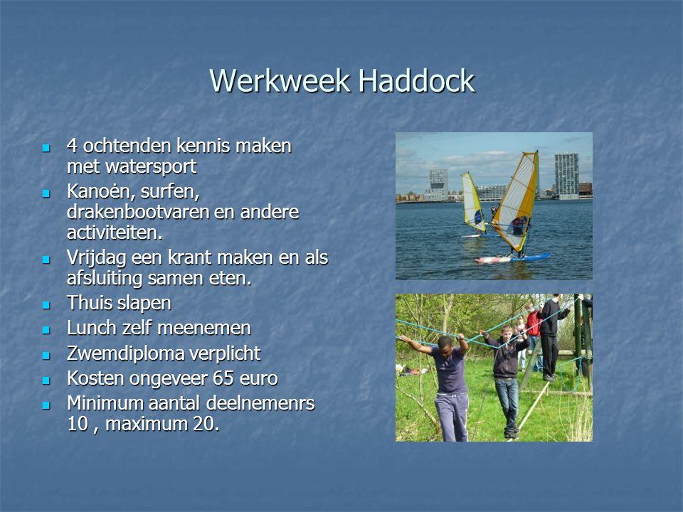 Werkweek Haddock  4 ochtenden kennis maken met watersport  Kanoėn, surfen, drakenbootvaren en andere activiteiten.