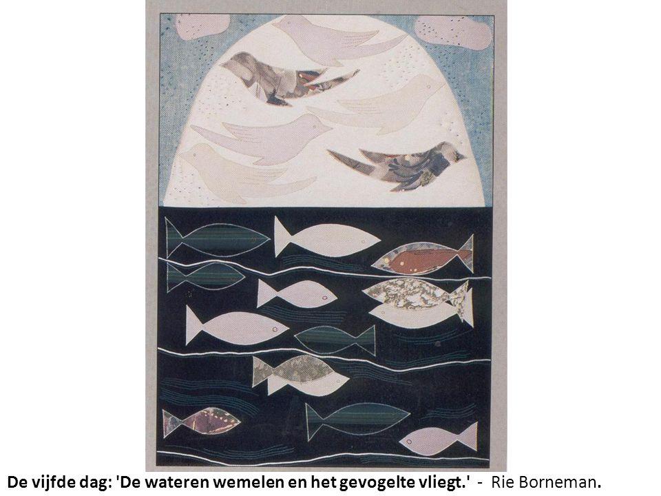 De vijfde dag: De wateren wemelen en het gevogelte vliegt. - Rie Borneman.