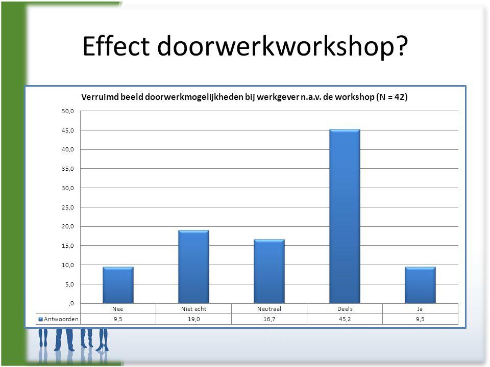 Effect doorwerkworkshop?