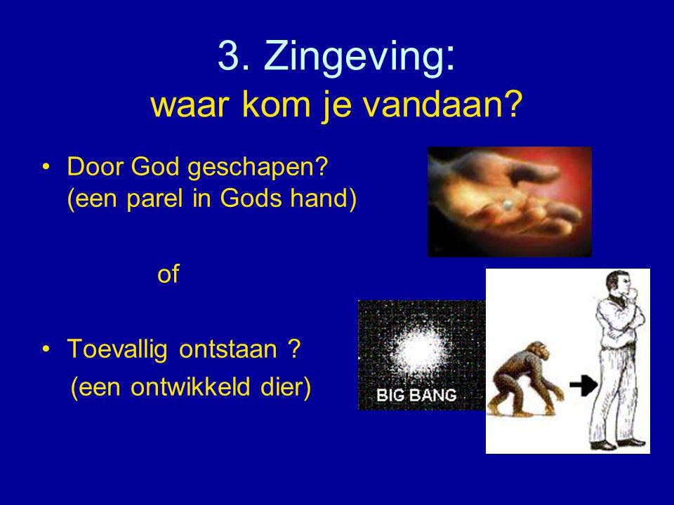 3. Zingeving : waar kom je vandaan? •Door God geschapen? (een parel in Gods hand) of •Toevallig ontstaan ? (een ontwikkeld dier)