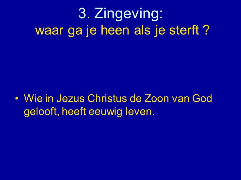 3. Zingeving: waar ga je heen als je sterft ? •Wie in Jezus Christus de Zoon van God gelooft, heeft eeuwig leven.