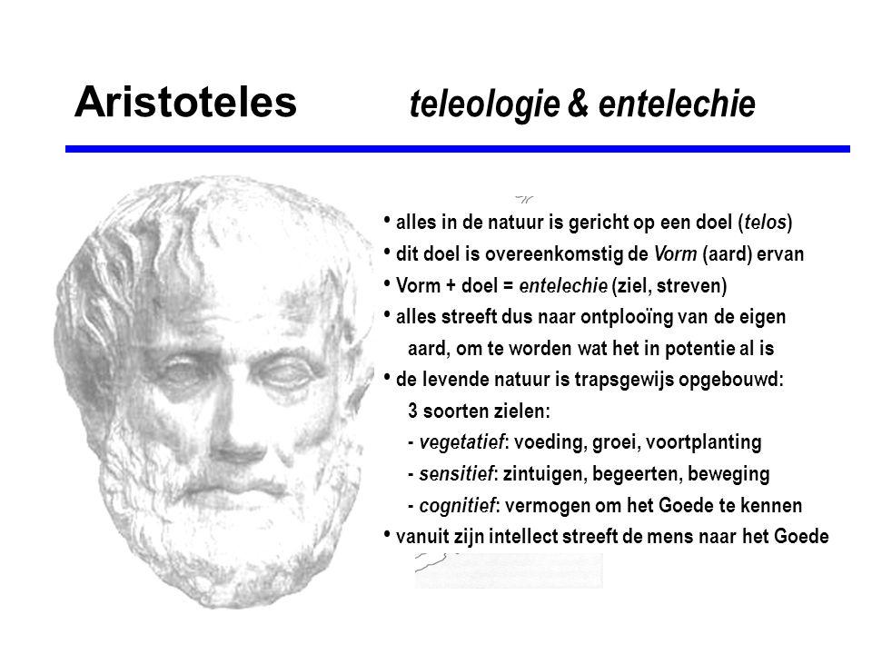 Aristoteles de onbewogen beweger • als Vorm & stof in aanraking komen: beweging • beweging veronderstelt beweger en bewogene • levende natuur kan zichzelf bewegen: bewegend + bewogen element in één organisme • ex nihilo nihil fit : uit niets komt niets voort , dus aan de oorsprong van alle beweging moet een beweger staan die zelf niet bewogen is: • onbewogen beweger = oorzaak alle zijn en worden • is zuivere Vorm & act, zonder stof of potentie • is nergens op gericht, rust in zichzelf • absoluut volmaakt: bevat (denkt) alleen zichzelf