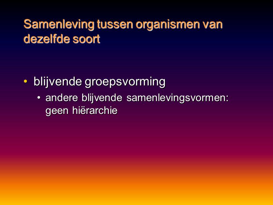 •blijvende groepsvorming •andere blijvende samenlevingsvormen: geen hiërarchie Samenleving tussen organismen van dezelfde soort