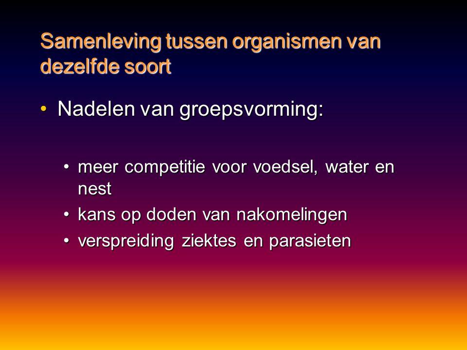 •Nadelen van groepsvorming: •meer competitie voor voedsel, water en nest •kans op doden van nakomelingen •verspreiding ziektes en parasieten Samenlevi