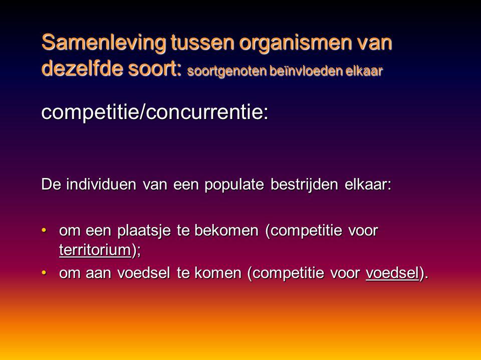 competitie/concurrentie: De individuen van een populate bestrijden elkaar: •om een plaatsje te bekomen (competitie voor territorium); •om aan voedsel