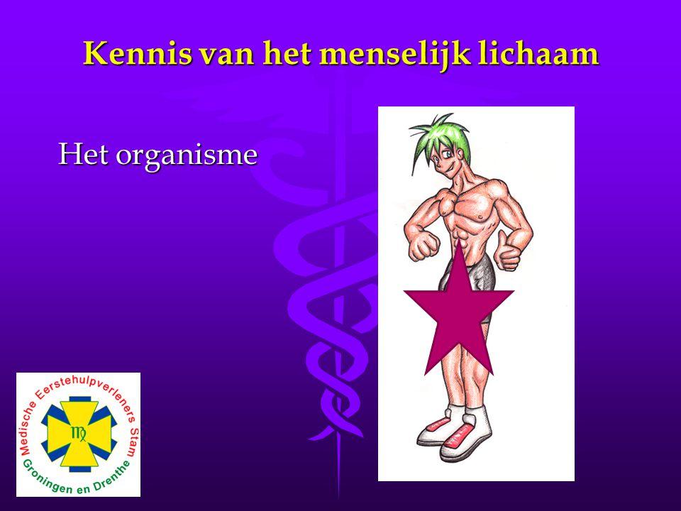 Kennis van het menselijk lichaam Het organisme