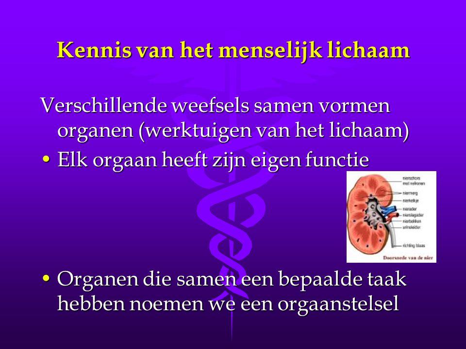 Kennis van het menselijk lichaam Verschillende weefsels samen vormen organen (werktuigen van het lichaam) •Elk orgaan heeft zijn eigen functie •Organen die samen een bepaalde taak hebben noemen we een orgaanstelsel