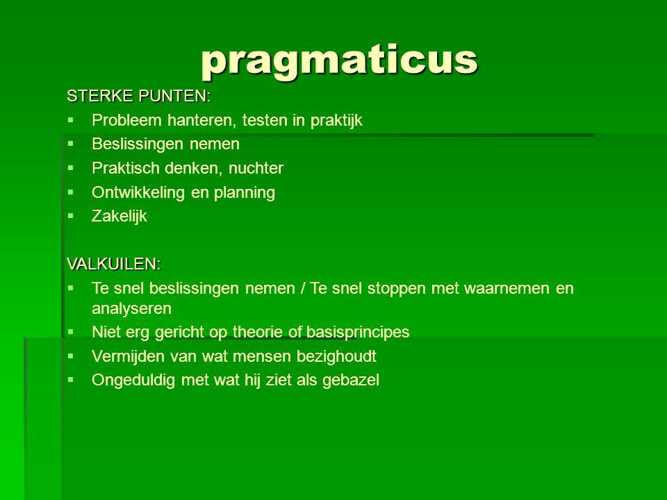pragmaticus STERKE PUNTEN:  Probleem hanteren, testen in praktijk  Beslissingen nemen  Praktisch denken, nuchter  Ontwikkeling en planning  Zakel