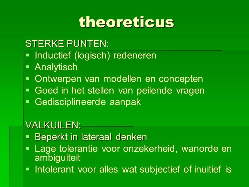 theoreticus STERKE PUNTEN:   Inductief (logisch) redeneren   Analytisch   Ontwerpen van modellen en concepten   Goed in het stellen van peilen