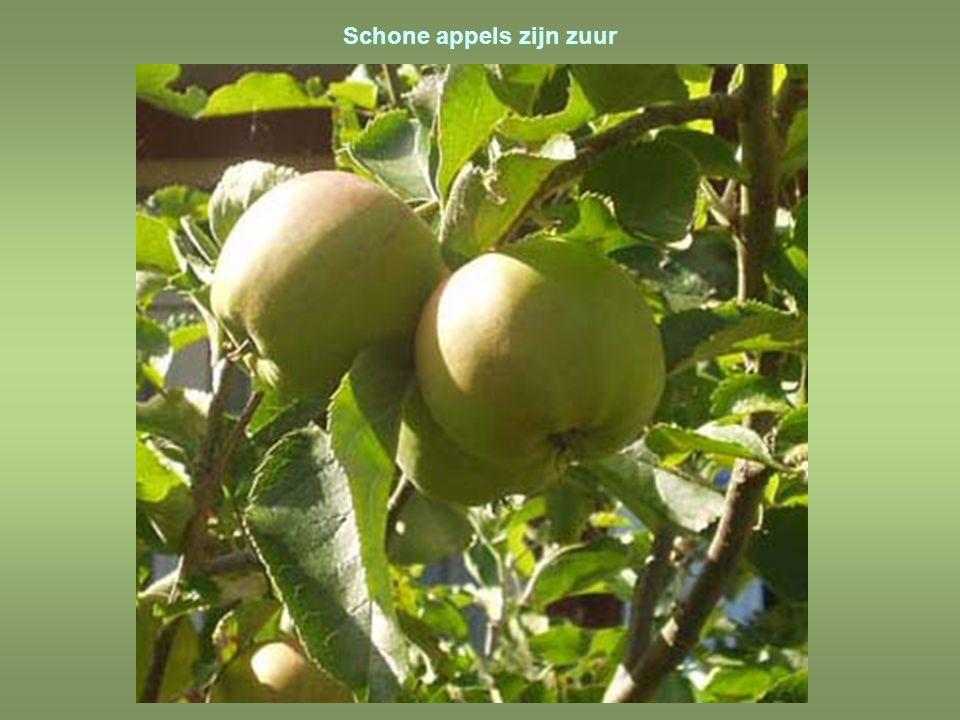 Appelen voor citroenen kopen