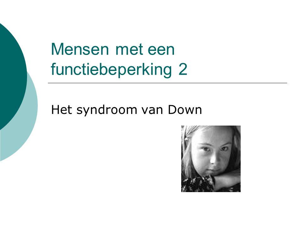 Mensen met een functiebeperking 2 Het syndroom van Down