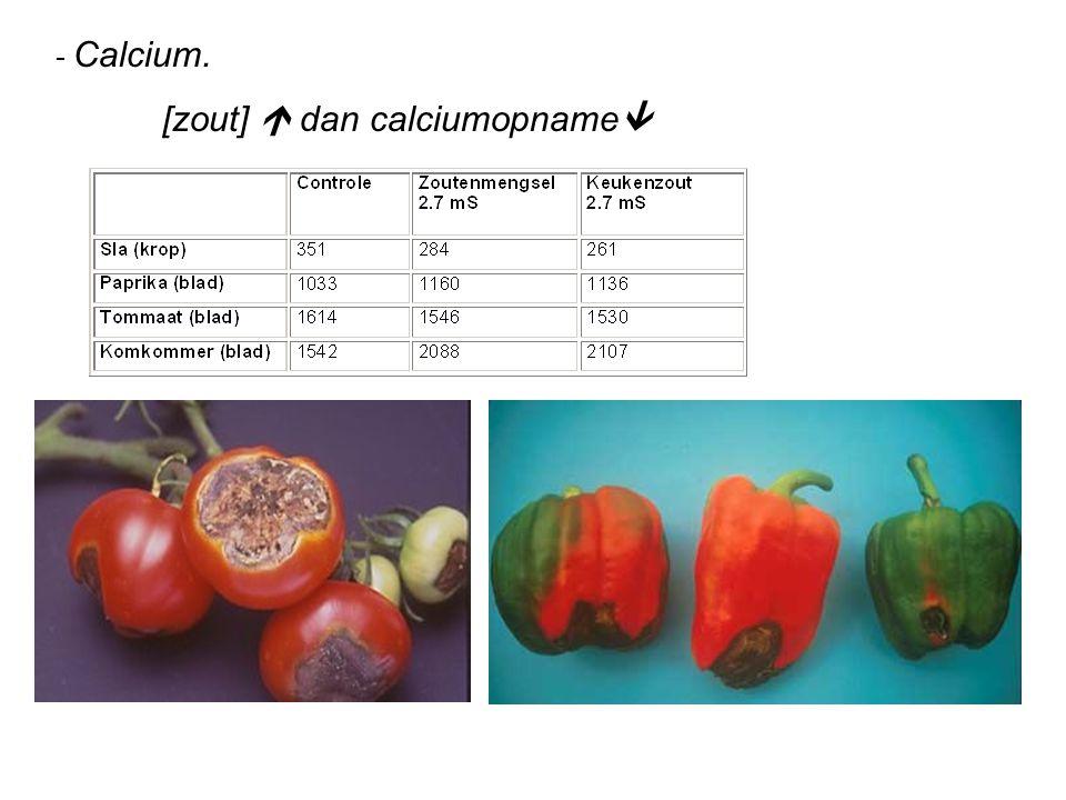 - Calcium. [zout]  dan calciumopname 