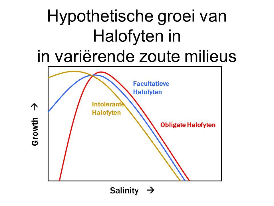 Hypothetische groei van Halofyten in in variërende zoute milieus Salinity  Growth  Intolerante Halofyten Facultatieve Halofyten Obligate Halofyten