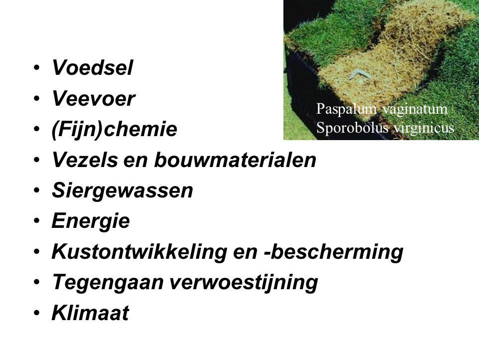 •Voedsel •Veevoer •(Fijn)chemie •Vezels en bouwmaterialen •Siergewassen •Energie •Kustontwikkeling en -bescherming •Tegengaan verwoestijning •Klimaat
