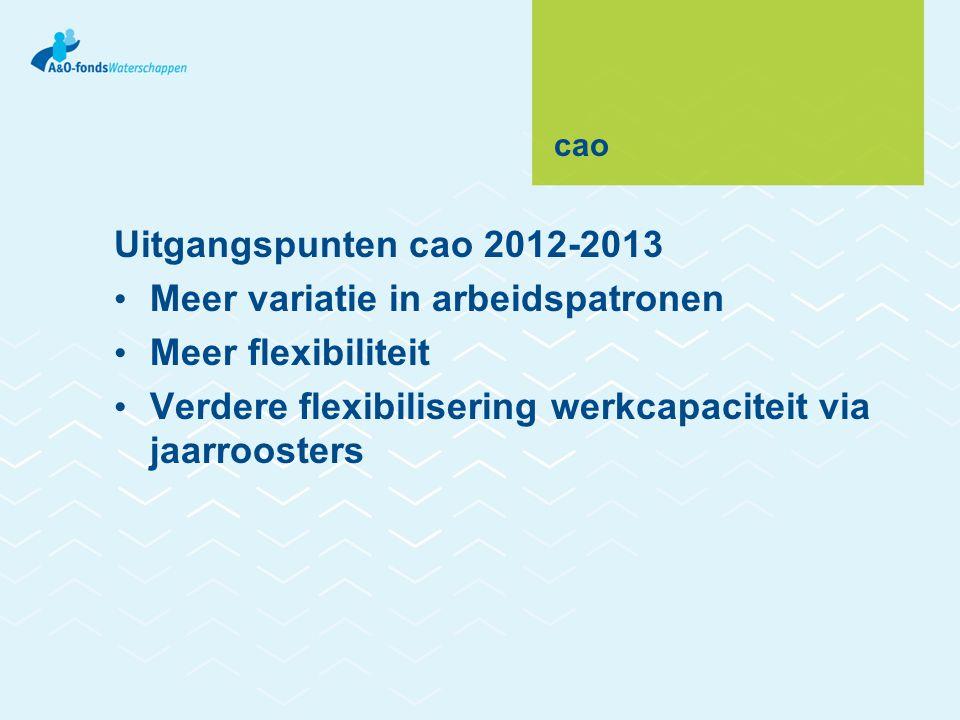 cao Uitgangspunten cao 2012-2013 • Meer variatie in arbeidspatronen • Meer flexibiliteit • Verdere flexibilisering werkcapaciteit via jaarroosters
