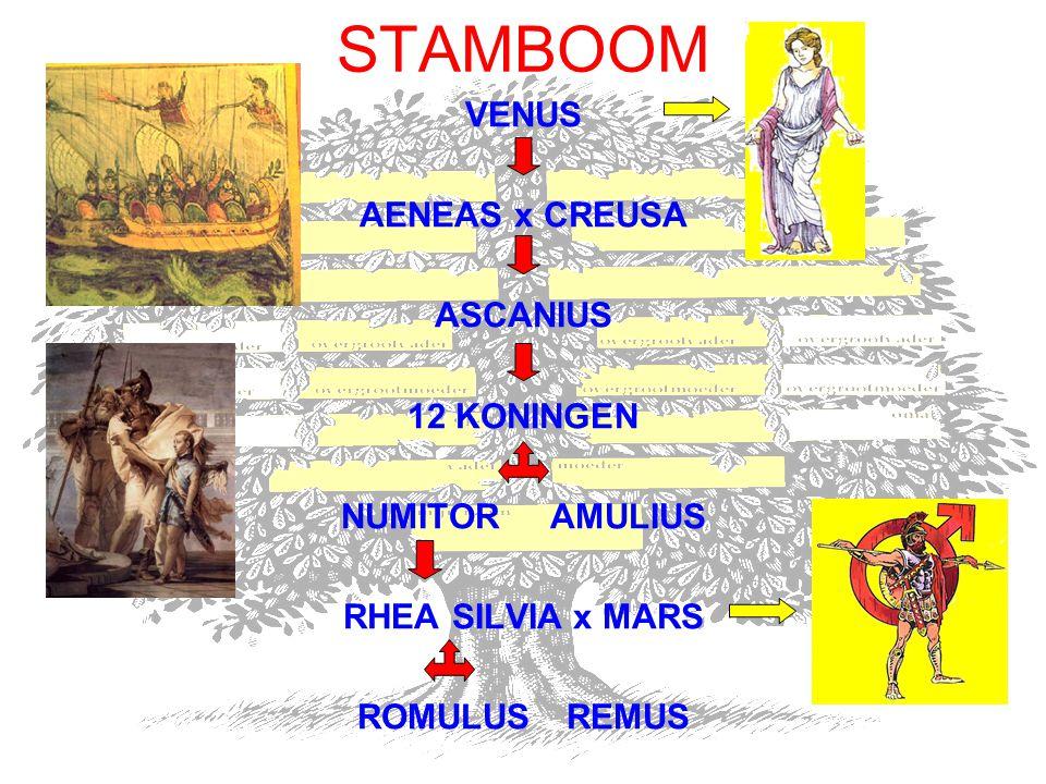 STAMBOOM VENUS AENEAS x CREUSA ASCANIUS 12 KONINGEN NUMITOR AMULIUS RHEA SILVIA x MARS ROMULUSREMUS