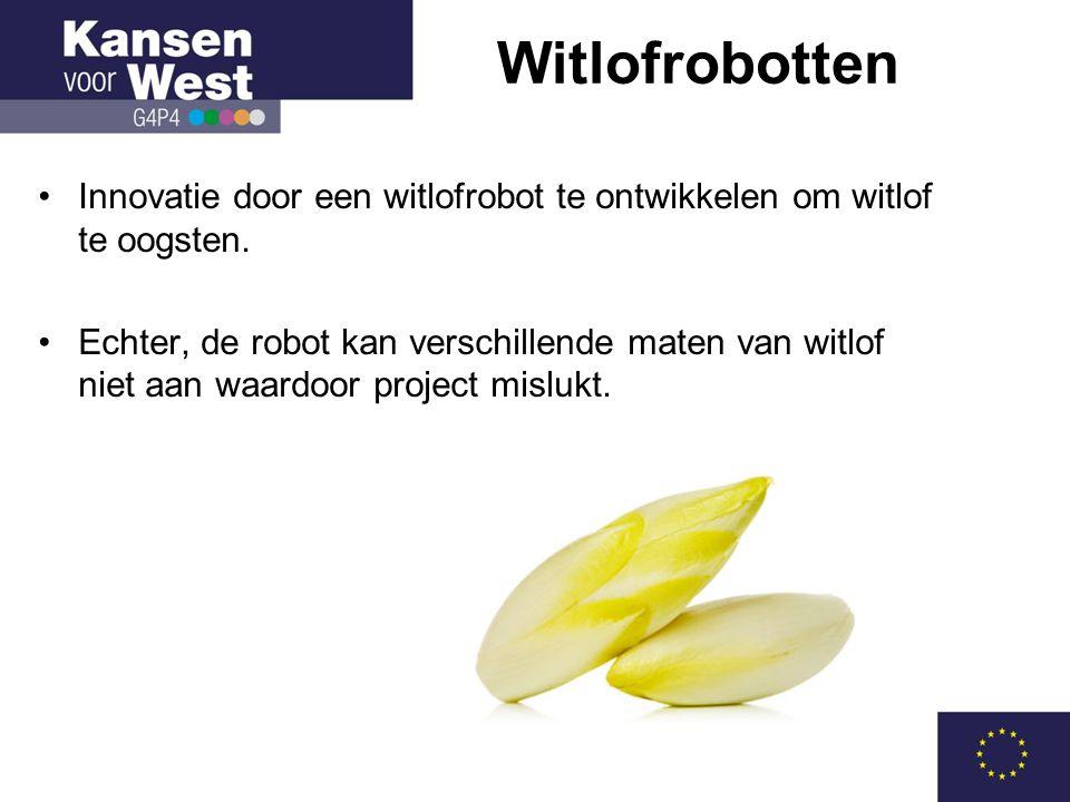 •Innovatie door een witlofrobot te ontwikkelen om witlof te oogsten.