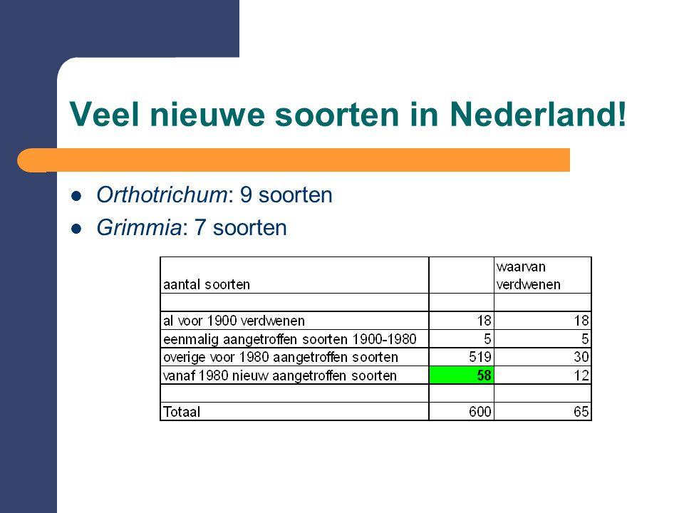 Veel nieuwe soorten in Nederland!  Orthotrichum: 9 soorten  Grimmia: 7 soorten