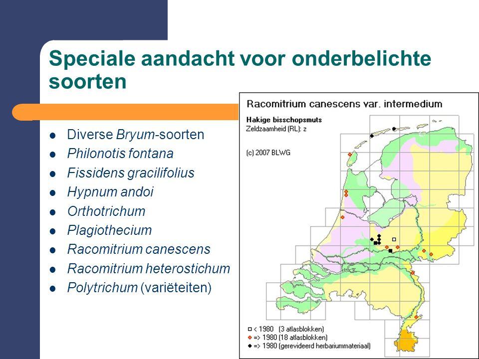 Speciale aandacht voor onderbelichte soorten  Diverse Bryum-soorten  Philonotis fontana  Fissidens gracilifolius  Hypnum andoi  Orthotrichum  Pl