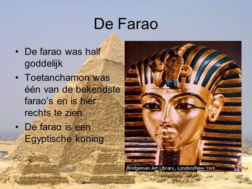 De Farao •De farao was half goddelijk •Toetanchamon was één van de bekendste farao's en is hier rechts te zien •De farao is een Egyptische koning Brid