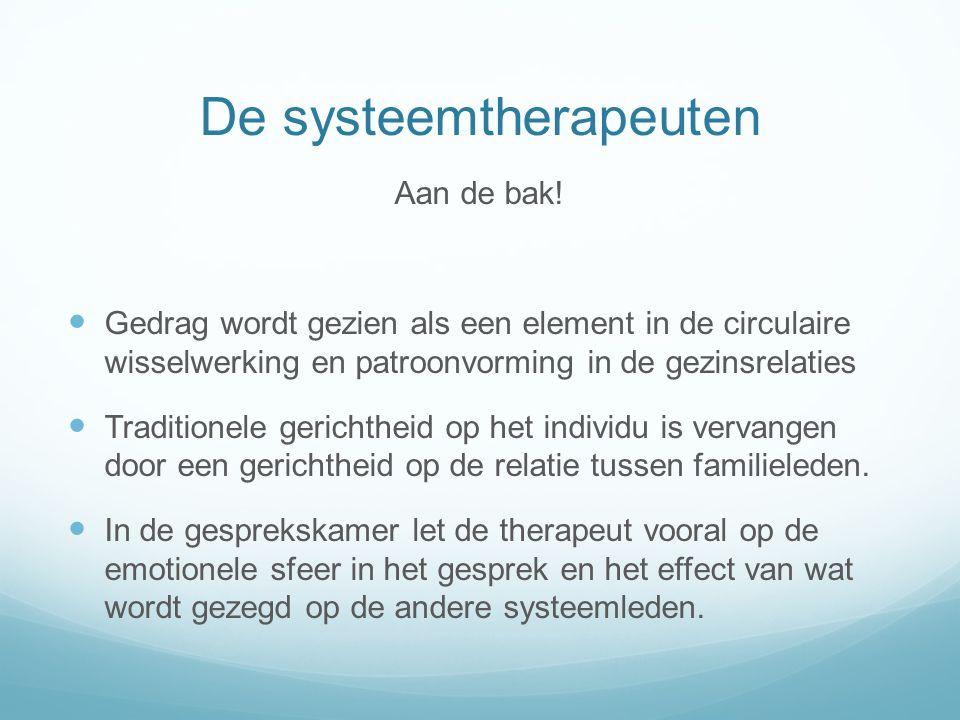 De systeemtherapeuten Aan de bak.