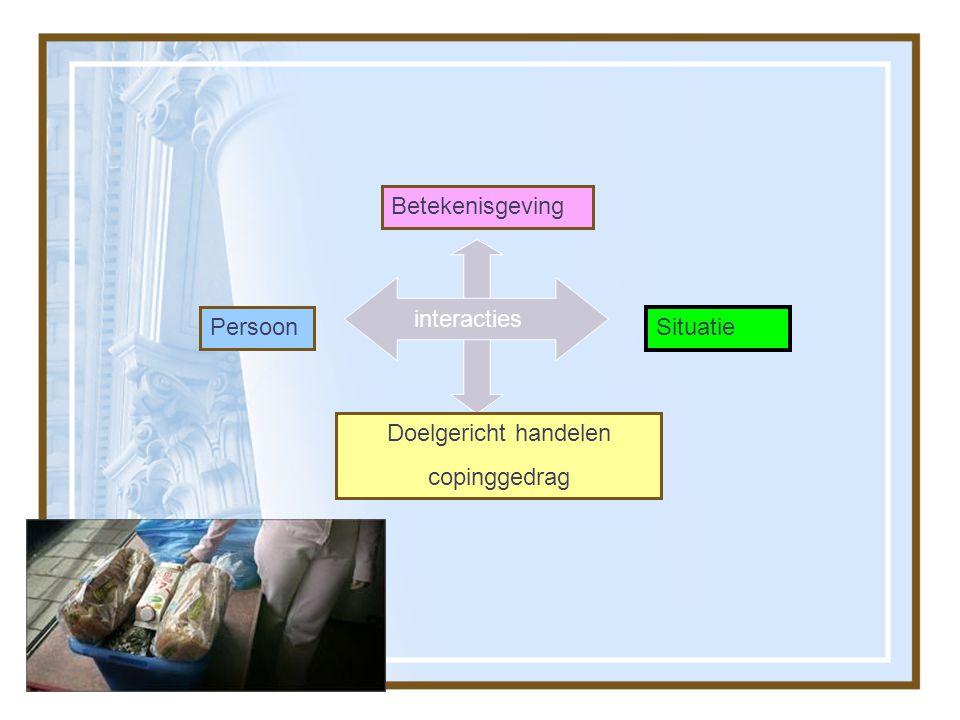 Persoon Situatie Doelgericht handelen copinggedrag Betekenisgeving Interacties interacties
