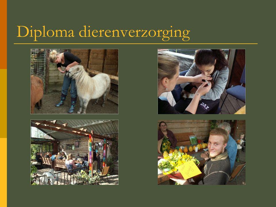 Diploma dierenverzorging