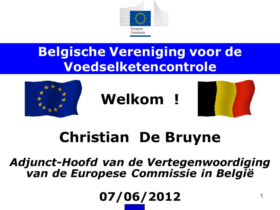 1 Welkom ! Christian De Bruyne Adjunct-Hoofd van de Vertegenwoordiging van de Europese Commissie in België 07/06/2012 Belgische Vereniging voor de Voe