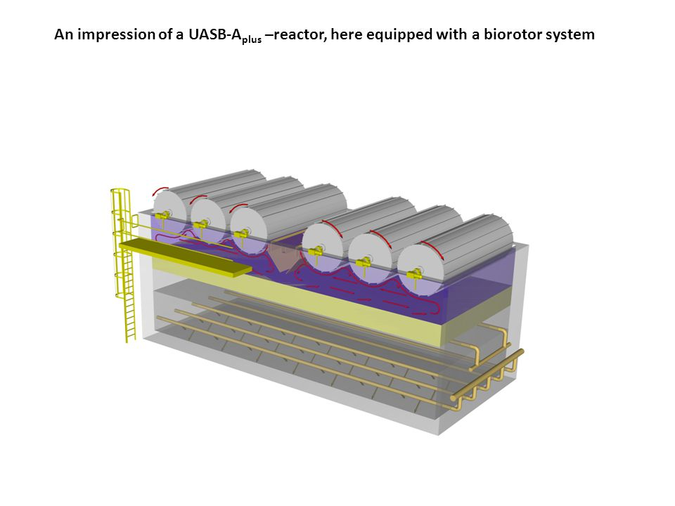 An impression of a UASB-A plus –reactor, here equipped with a biorotor system
