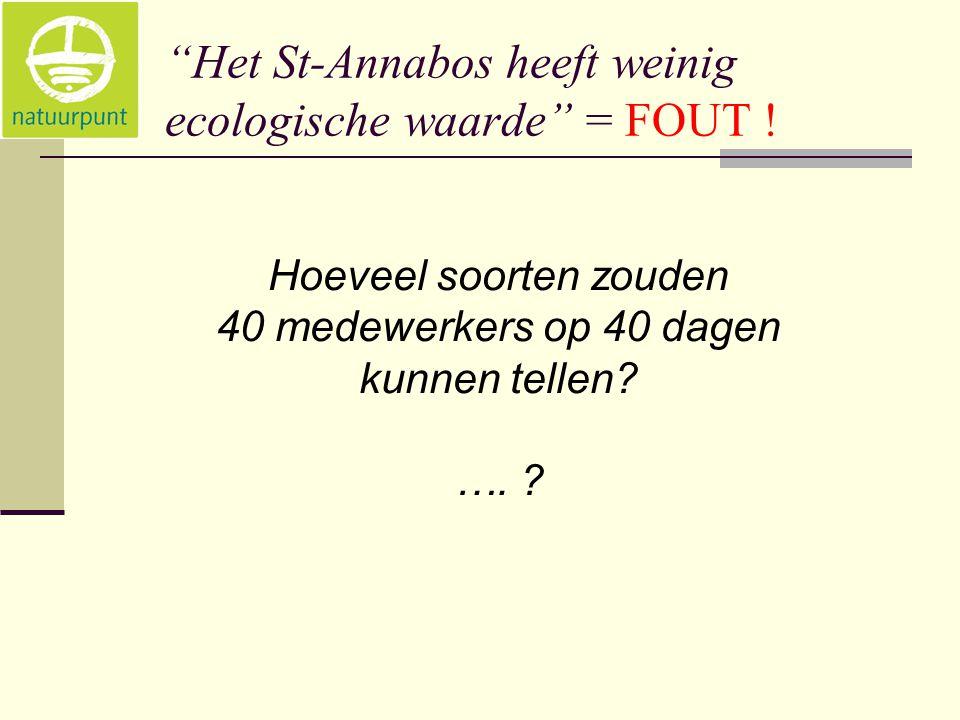 """""""Het St-Annabos heeft weinig ecologische waarde"""" = FOUT ! Hoeveel soorten zouden 40 medewerkers op 40 dagen kunnen tellen? …. ?"""