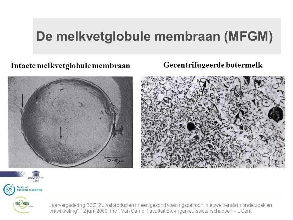 De melkvetglobule membraan (MFGM) Intacte melkvetglobule membraan Gecentrifugeerde botermelk Jaarvergadering BCZ Zuivelproducten in een gezond voedingspatroon: nieuwe trends in onderzoek en ontwikkeling , 12 juni 2009, Prof.