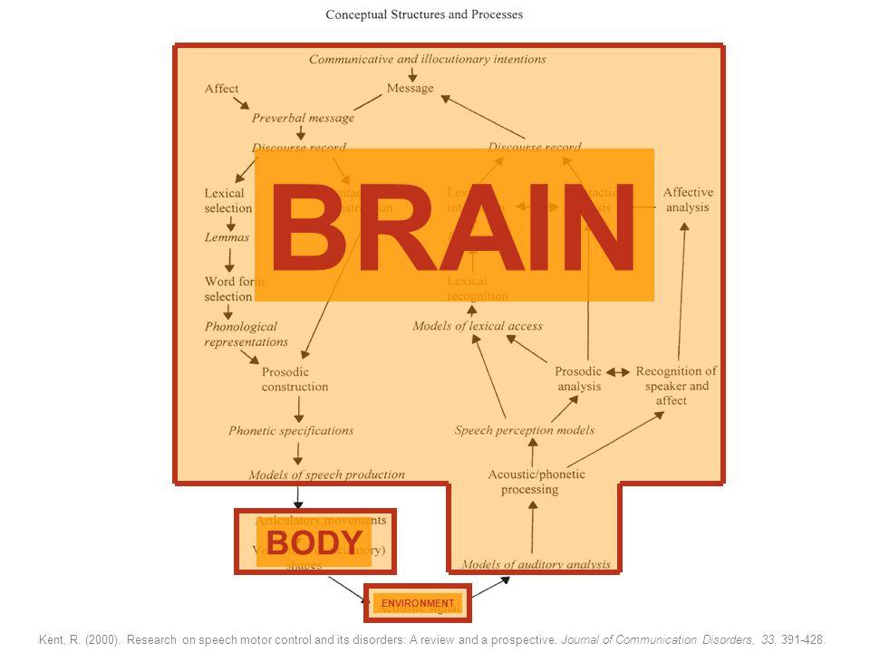 Rol van omgeving en aangeboren taal(perceptie) : Wisselwerking tussen Omgeving, Lichaam en Brein: Kanzi Over de Kwaliteit van Foneemrepresentaties als Verklaring voor Dyslexie NOSMO, 24-02-06 Picture from The Language Research Centre @ GSU