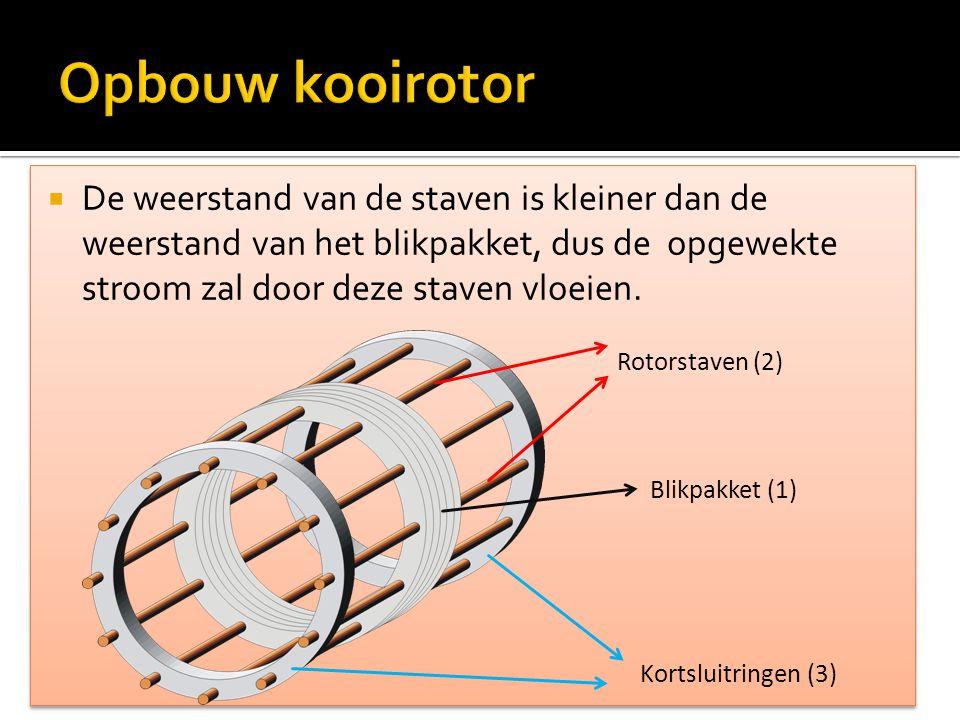  De weerstand van de staven is kleiner dan de weerstand van het blikpakket, dus de opgewekte stroom zal door deze staven vloeien. Rotorstaven (2) Bli