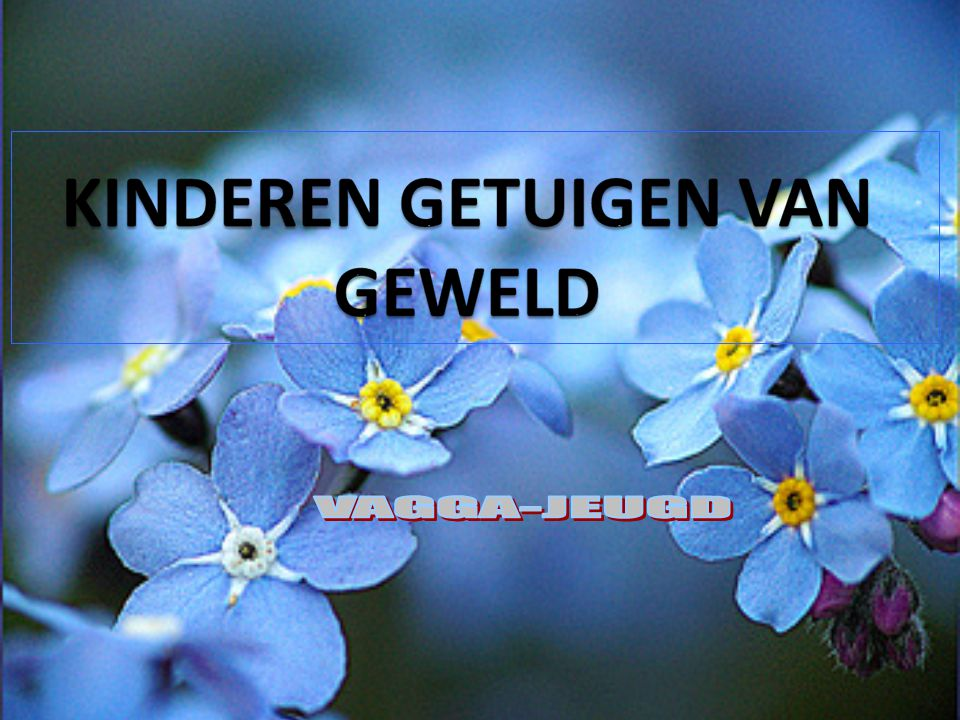 Slot Het is een uniek aanbod in Antwerpen en zelfs in Vlaanderen, omdat in de context van intrafamiliaal geweld de kinderen veelal de vergeten slachtoffers zijn.
