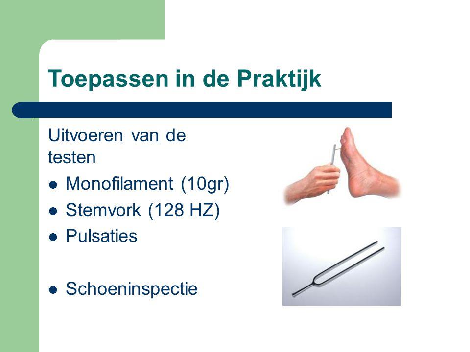 Toepassen in de Praktijk Uitvoeren van de testen  Monofilament (10gr)  Stemvork (128 HZ)  Pulsaties  Schoeninspectie