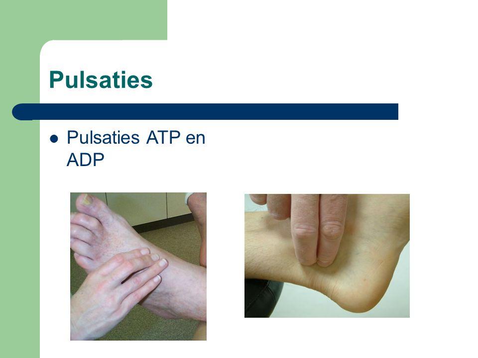 Pulsaties  Pulsaties ATP en ADP