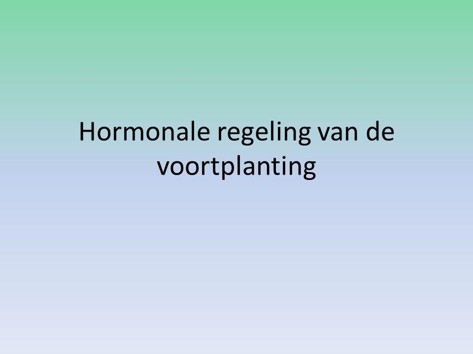 hormonen • Hypofyse 1ste 12 dagen FSH en LH • FSH  rijping follikels in eierstokken • FSH en LH  Productie van oestrogenen (in wand rijpende follikels) • oestrogenen  baarmoederslijmvlies wordt dikker