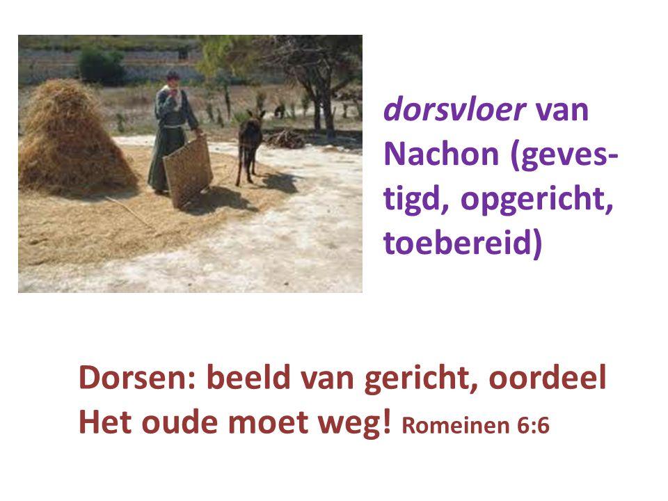 dorsvloer van Nachon (geves- tigd, opgericht, toebereid) Dorsen: beeld van gericht, oordeel Het oude moet weg! Romeinen 6:6