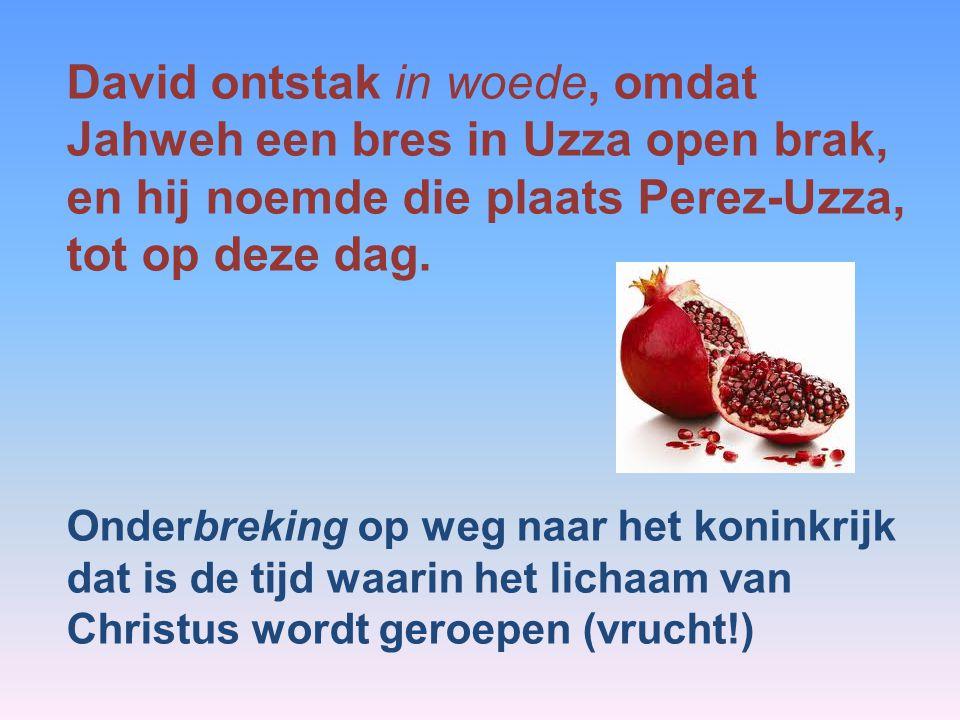 David ontstak in woede, omdat Jahweh een bres in Uzza open brak, en hij noemde die plaats Perez-Uzza, tot op deze dag. Onderbreking op weg naar het ko