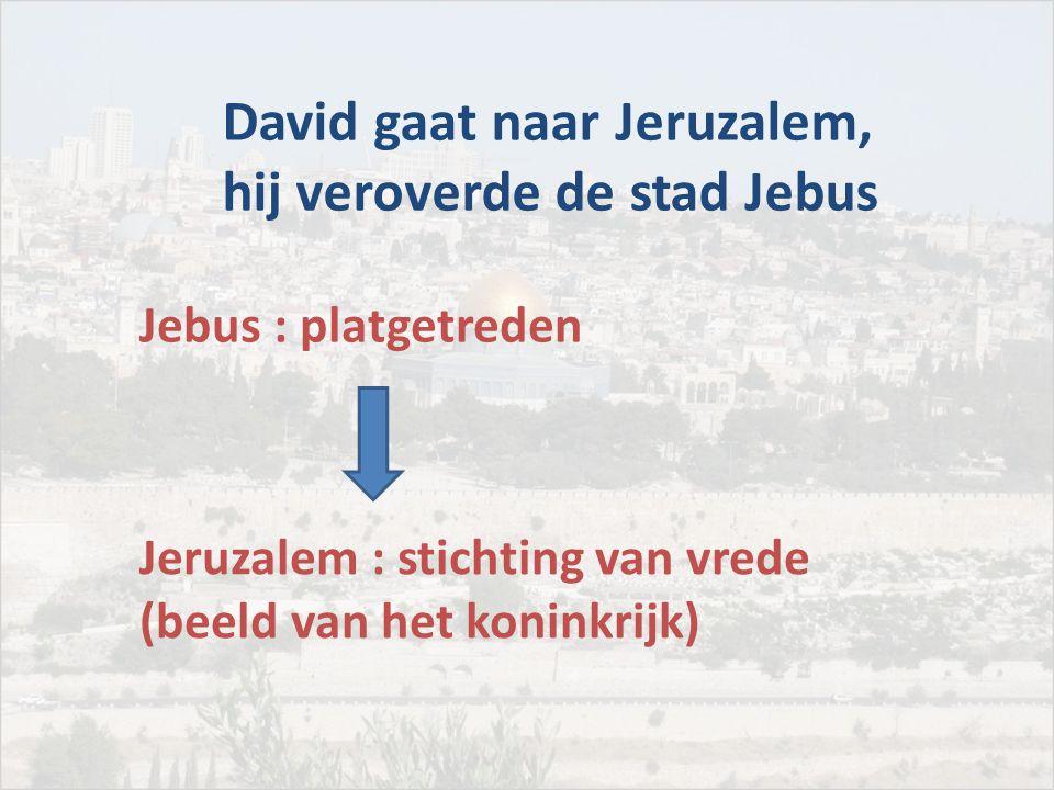 David gaat naar Jeruzalem, hij veroverde de stad Jebus Jebus : platgetreden Jeruzalem : stichting van vrede (beeld van het koninkrijk)